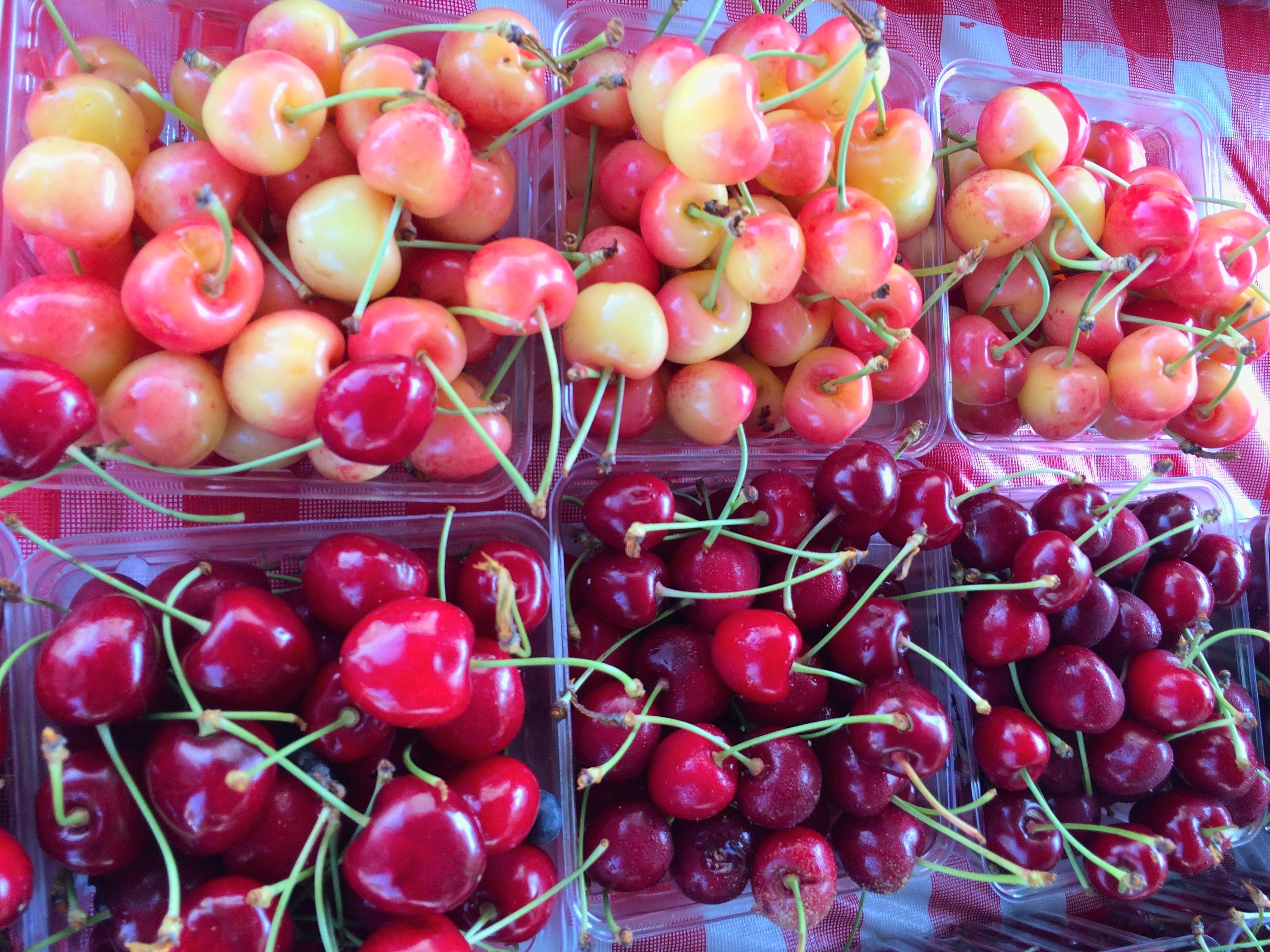 Olson Cherries
